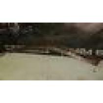 MUSTIBISHI LANCER EVO 4 5 6 GENUINE PASSENGER SIDE FRONT WIND DEFLECTOR